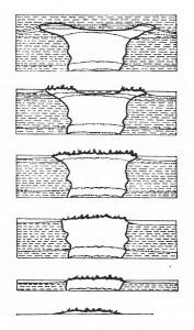 Formation d'une vasque